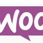WordPress web design example