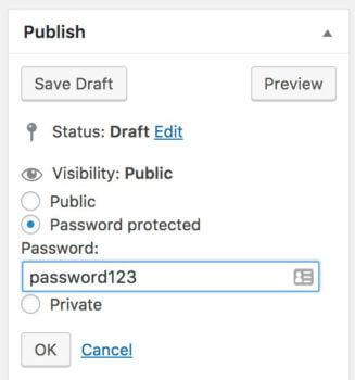 Password protect portfolio in WordPress