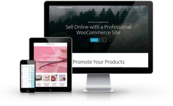 Affordable WooCommerce Service