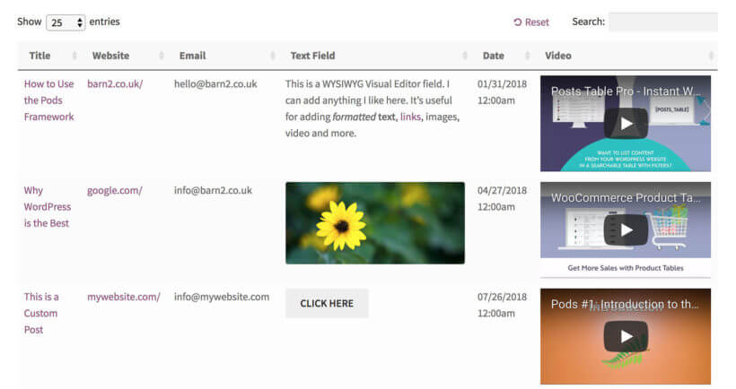 Display WordPress custom fields on website