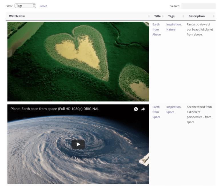 WordPress video gallery individual video.