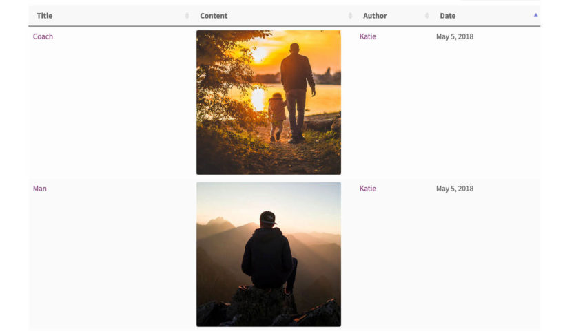 Front end WordPress media library