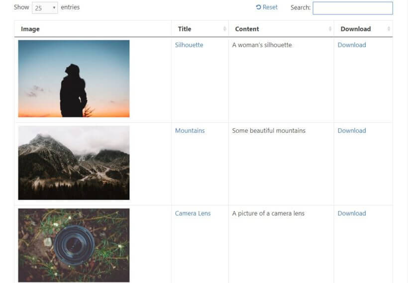 example of front end media library for images