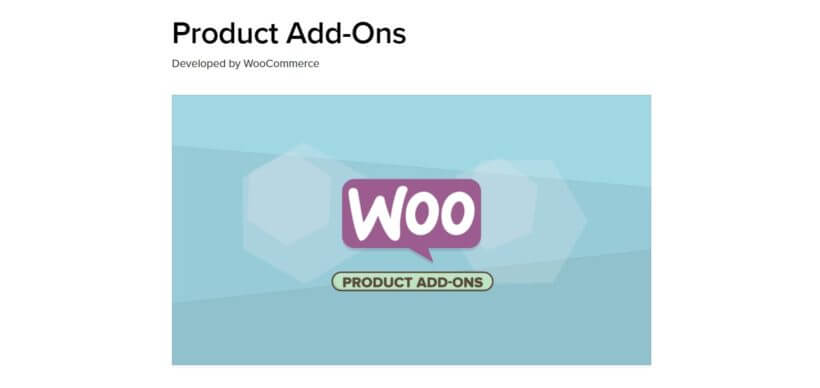 The WooCommerce Product Add-Ons extension.