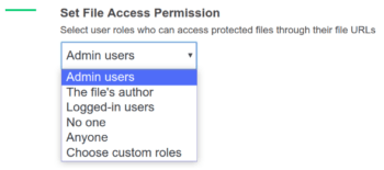 File access permission