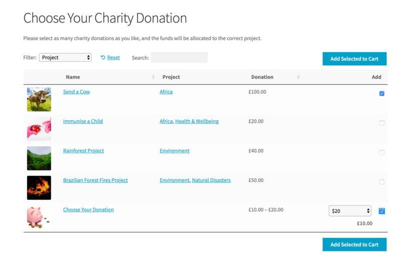 WooCommerce charity donation plugin