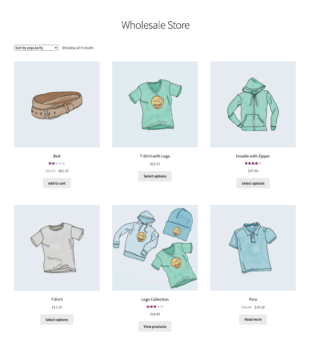Main shop page for wholesale users